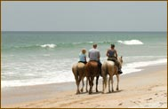 Quintana Roo, Mexico Horseback Riding