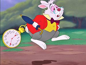 conejo-blanco