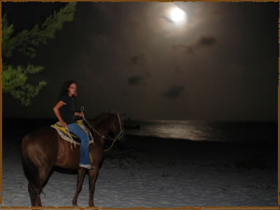 moonlight horseback riding
