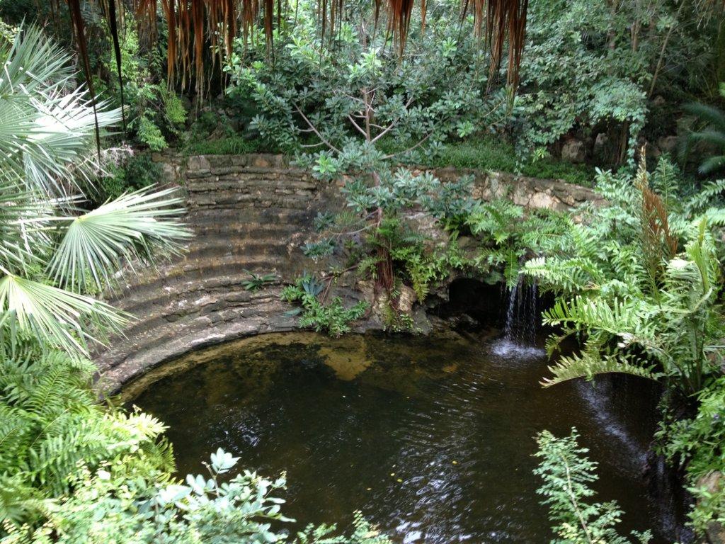 Zen Grand Cenote
