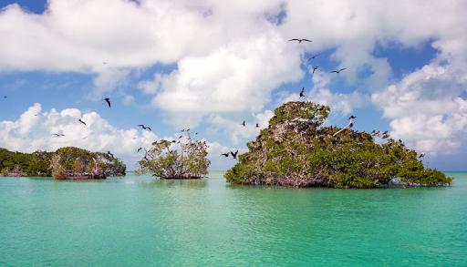 Punta Allen Riviera Maya