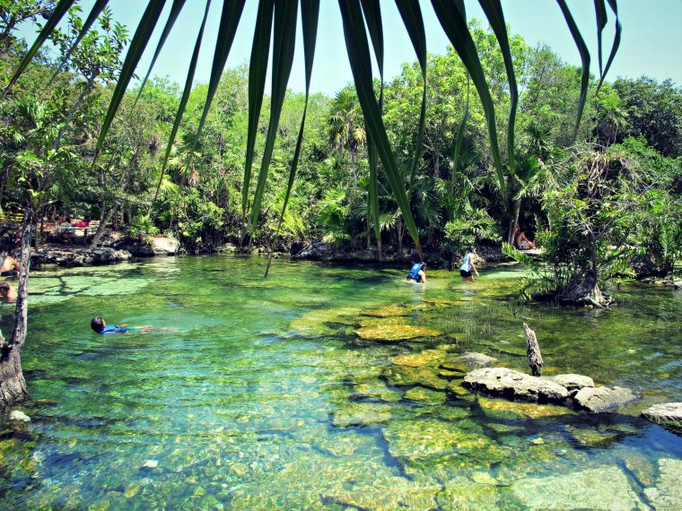 Blue cenote located at kilometer 266 near Puerto Aventuras in the Riviera Maya