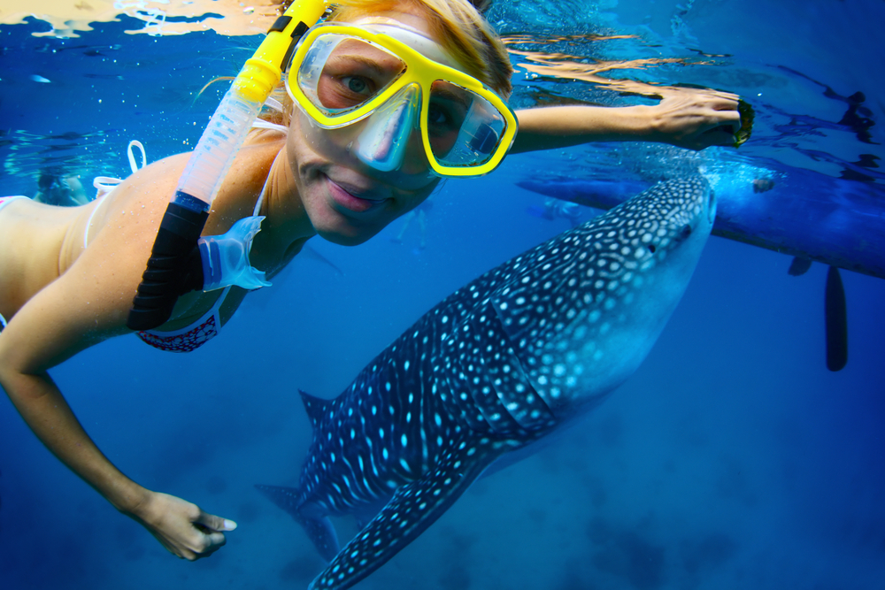 types of vacations for women in riviera maya swim with sharks